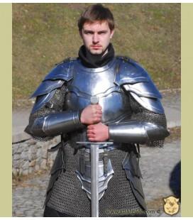 Set de armadura Combatiente Falnue