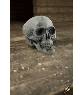 Small Skull - Bone