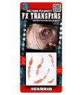 Scarred FX Transfers