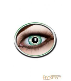 Ojos de Gato Amarillos